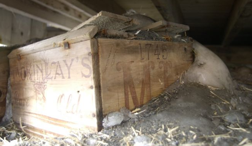 Shackleton's whisky unearthed