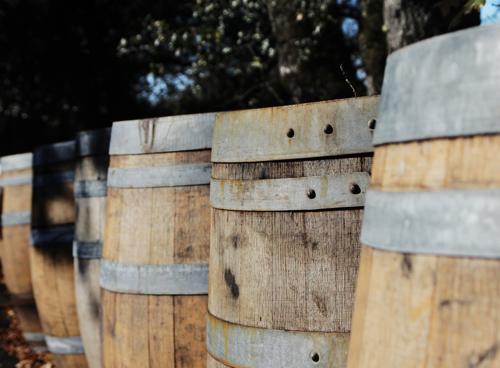 Sonoma_Wine_Barrels