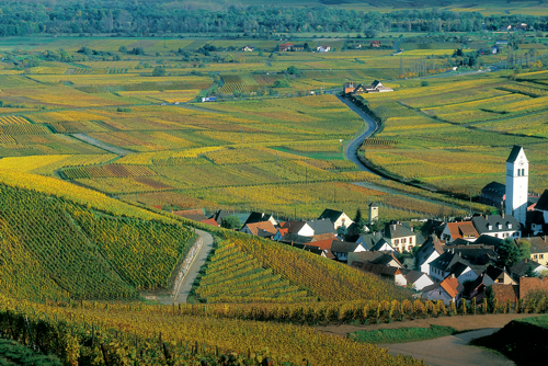 Alsace_France_wine