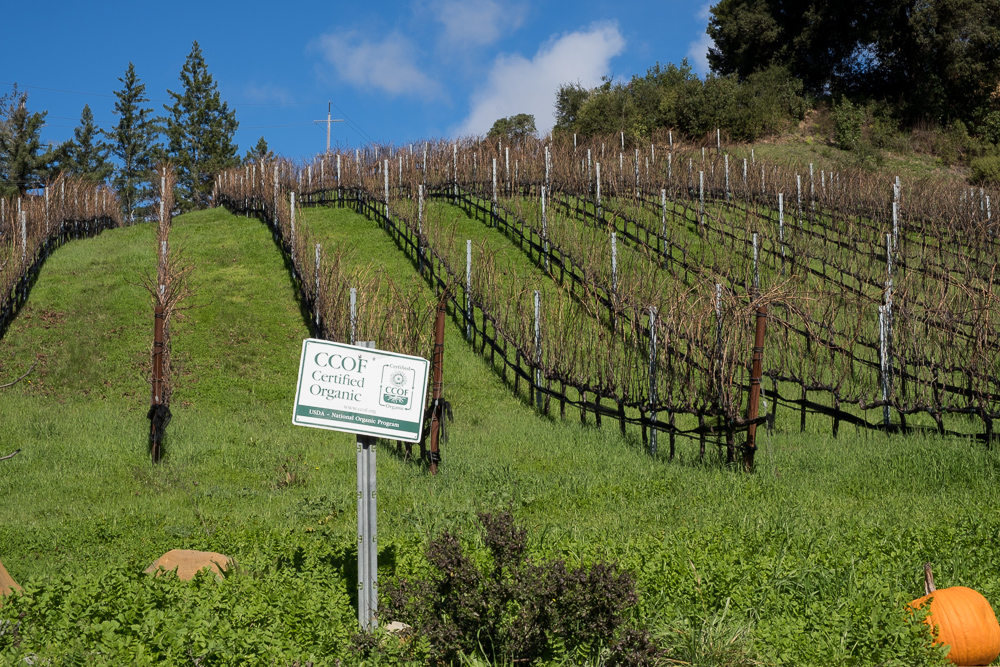 Big Basin Estate Vineyards