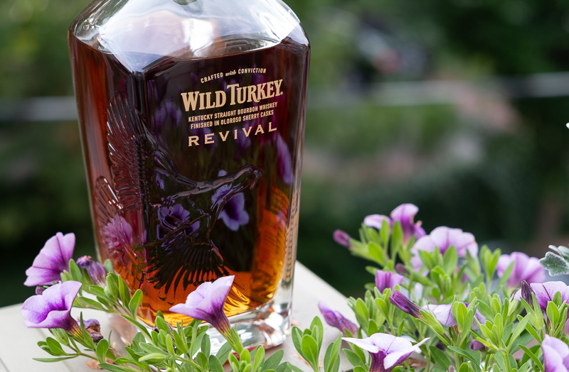 Wild Turkey Revival